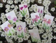 Peinture encaustique fleurs roses pour cartes cadeaux