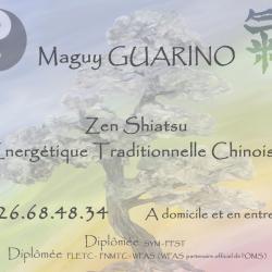 carte de visite shiatzu 2013