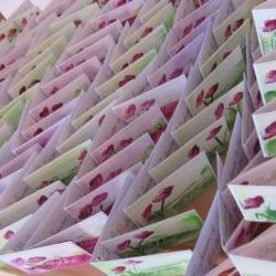 étiquettes dragées communion Chloé, vertes et roses