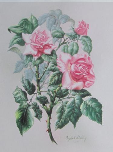 07 - images 3D - bouquet de roses