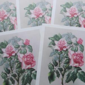 Images roses 3d