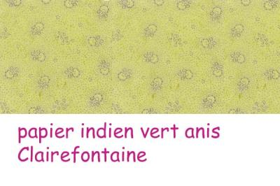01 papier indien vert anis Clairefontaine