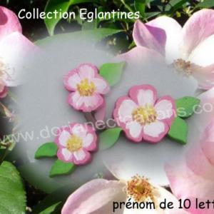 Prenom eglantines 10l 1