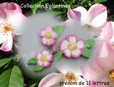 11Lettres - Prénom en bois églantines